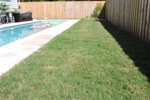 Bermuda Sod Grass Installation