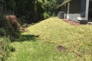 Landscape Design Jacksonville Florida